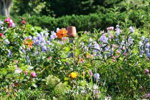Jardin Grasse